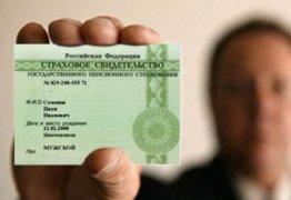 Как получить страховое пенсионное свидетельство в России?