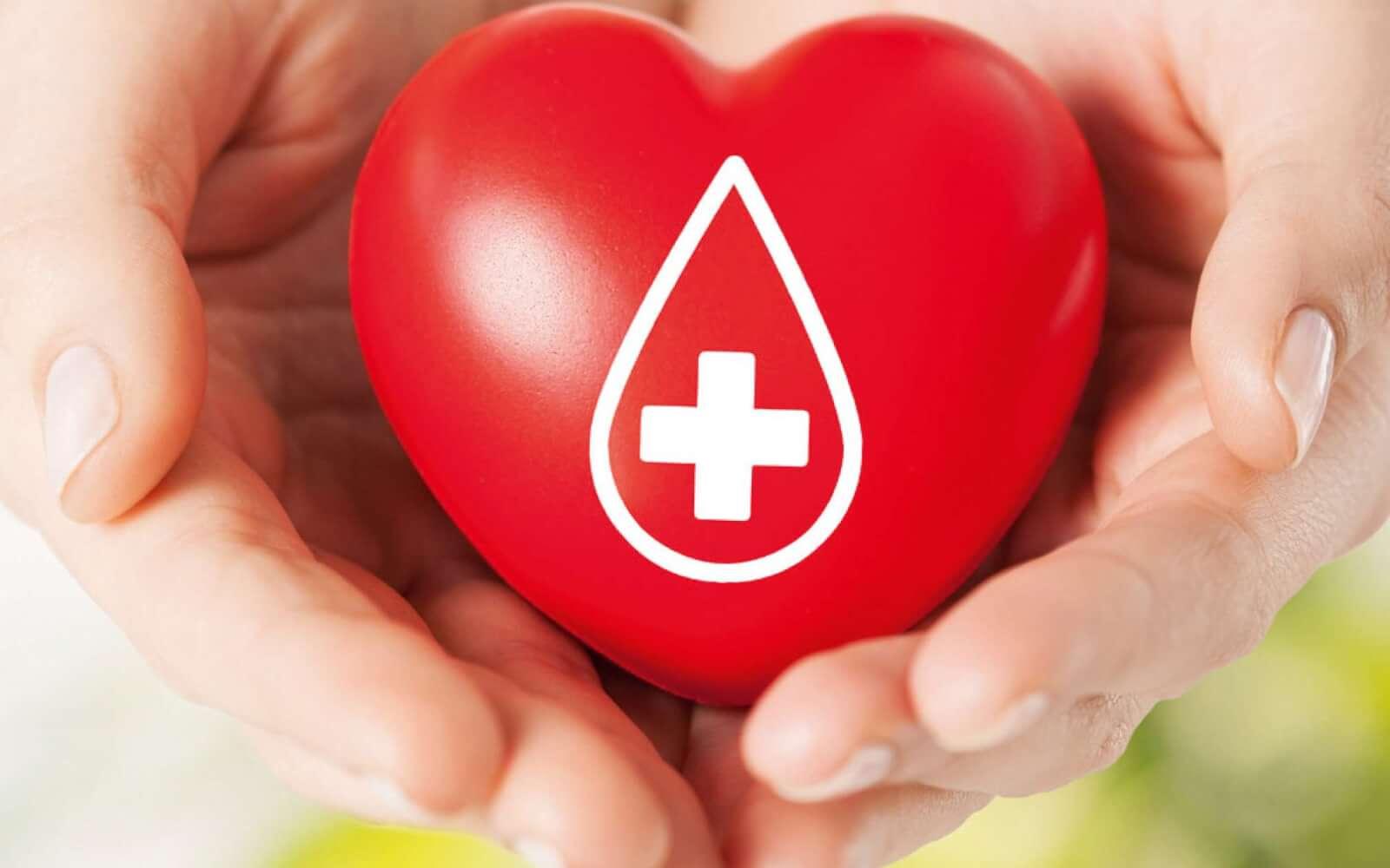 Понятие о донорстве, как стать донором?
