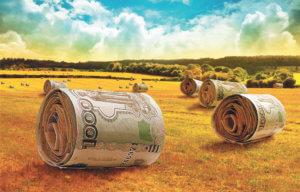 Меры финансовой помощи аграриям