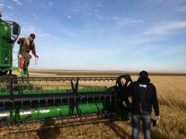 Предоставление субсидий на сельское хозяйство: законодательная база