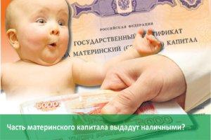 материнский капитал можно использовать для покупки жилья