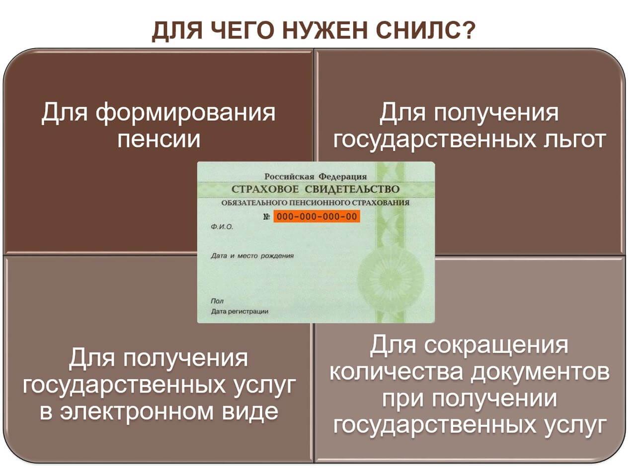 Оформление СНИЛС документы для получения СНИЛС
