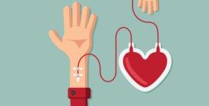 правила сдачи крови на донорство