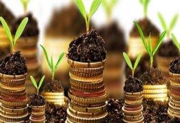 Земельный налог в 2019 году — какие лица и организации освобождены от уплаты, как получить льготу