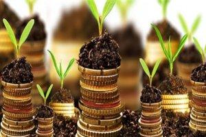Граждане пенсионеры освобождаются от уплаты земельного налога