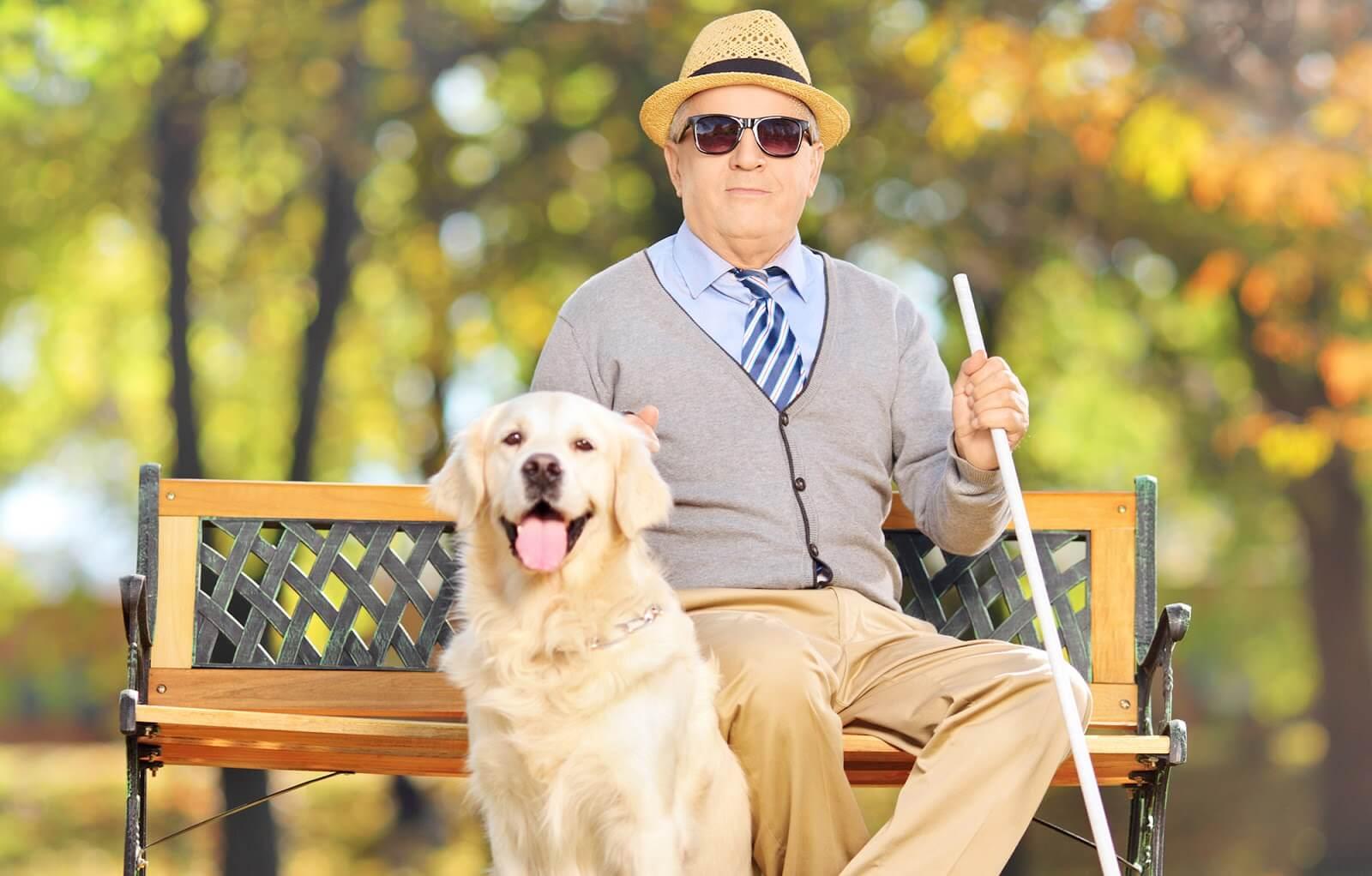 Инвалидность по зрению: критерии и правила получения