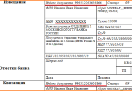Индекс документа в налоговой квитанции: что это такое, и для чего он нужен